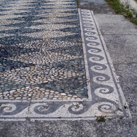 TLT Vergina Mosaic in Pella