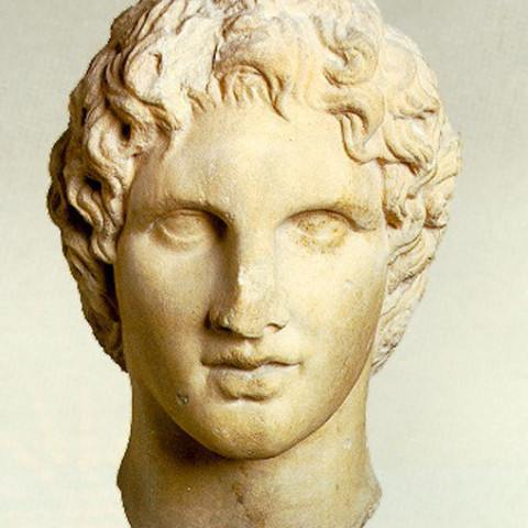 TLT Vergina Alexandros